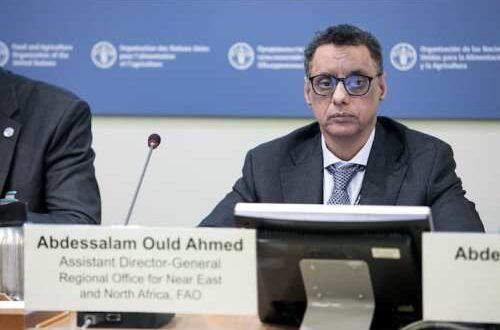 وزير المعادن ينتقد اتفاق موريتانيا مع «تازيازت»
