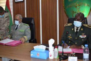 «دوريات» موريتانية – سنغالية لتأمين حقل الغاز المشترك